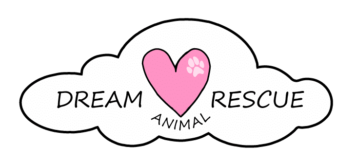 Fundraiser for DREAM Animal Rescue