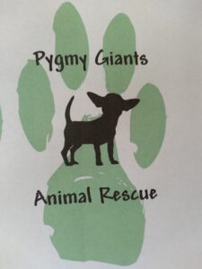 Fundraiser for Pygmy Giants Animal Rescue